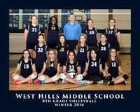 WHMS 2016 VOLLEYBALL