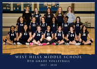 WHMS Volleyball